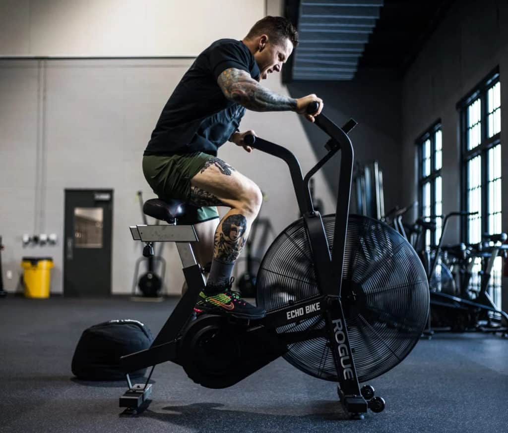 Rogue Echo Bike gym