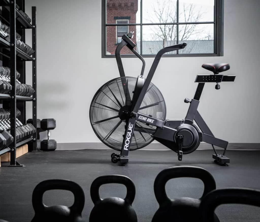 Rogue Echo Bike home gym
