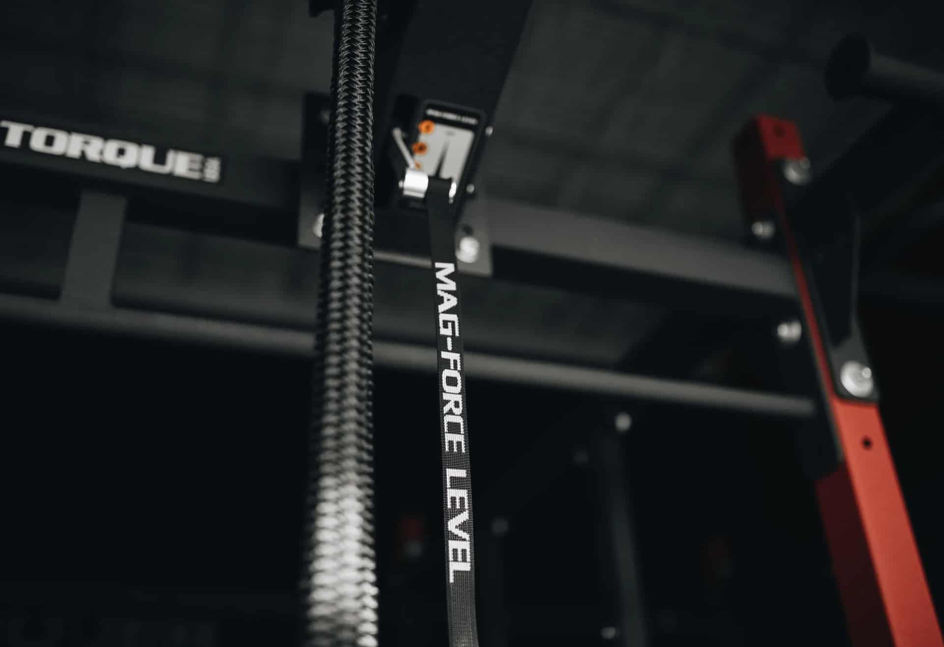 Torque Fitness Endless Rope Trainer lighter